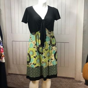 DRESS BARN BLACK/GREEN DRESS size 18W